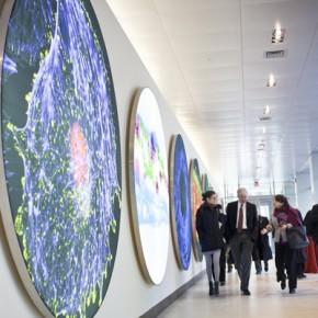 Cambridge'de İnovasyon - Boston'da Neler Oluyor?