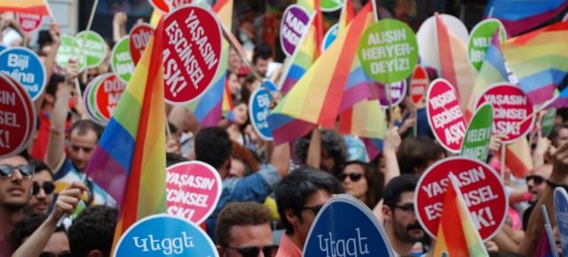 29 HAZİRAN 2014 LGBT ONUR YÜRÜYUŞÜ:  GENEL AHLAKSIZ!