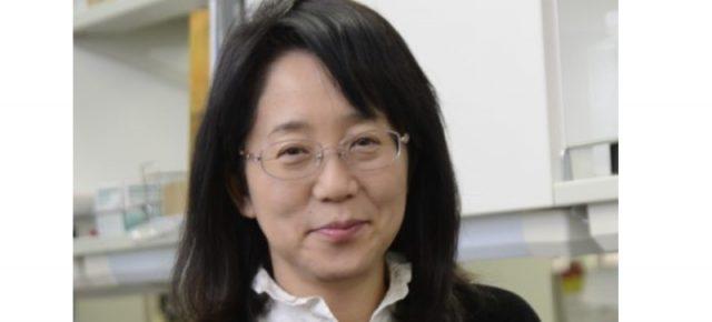Masayo Takahashi: Rejeneratif (Yenileyici) Tıp Uygulamalarına bir Bakış